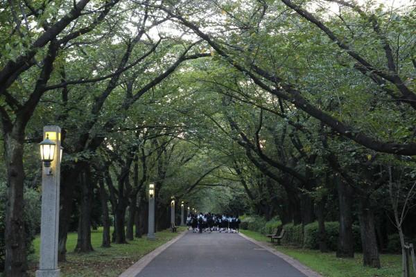 Hero2014_辰巳の森緑道公園